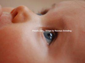 Derfor er mælkesyrebakterier gode for din baby